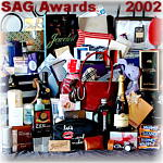Screen Actors Guild Awards 2002