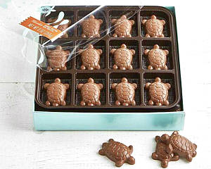 An open box of V Chocolate Turtles is seen from above