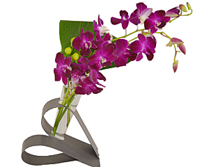 a heart shaped vase holding orchids