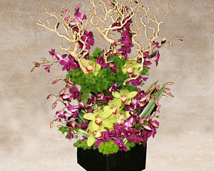 a beautiful arrangement of orchids that look like they are climbing up out of bare branches from the square wood box container