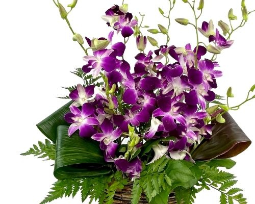 a vase arrangement of orchids and greens
