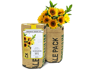 Urban Agriculture Sunflower Planter