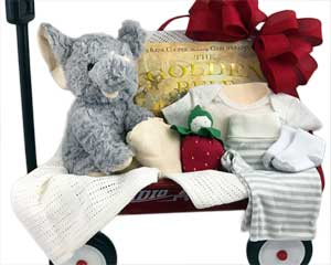 a 20 inch Radio Flyer Wagon with a stuffed animal, baby book, blanket and other quality baby items - click here